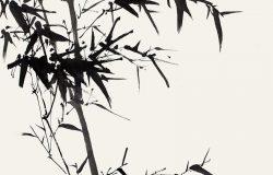 竹子-中国水墨画。