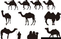 骆驼轮廓。矢量图像