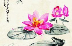 """卡片与莲花,青蛙和蜻蜓在传统的日本相扑风格的老式水彩画背景。矢量图象形文字""""花""""。"""