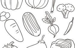 蔬菜向量集