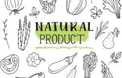 天然产品。一套各种涂鸦,手绘粗糙,简单的素描,不同种类的蔬菜。白色背景上分离的矢量写意插图。