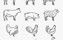 矢量薄线农场动物图标收集。食品杂货和肉店的畜禽标志