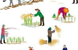 农业矢量设计中的卡通造型