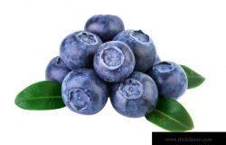 用剪裁路径隔离在白色上的一叠蓝莓