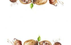 画框欢迎水彩画的邀请-坚果。核桃榛子叶。花的复古图案。