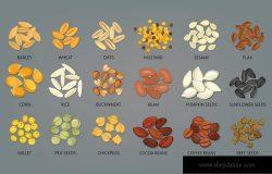 葵花籽、南瓜豆、可可豆和咖啡甜菜。大麦,小麦,燕麦,芥末,芝麻,亚麻,玉米,大米,荞麦,豆子,小米和鹰嘴豆。食物