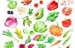 一套用手绘的水彩画,一套带有喷漆的蔬菜。