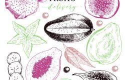 矢量手工绘制异国水果。刻有冰沙碗原料。热带甜食递送。杨桃,番木瓜,芒果,无花果,石榴。用于异国风味的餐饮聚会