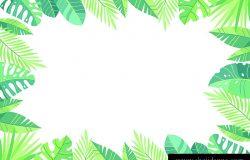 矢量图绿色植物,异国情调的叶子,香蕉叶,槟榔,棕榈植物。热带框位置为您的文字。白色背景隔离。婚礼邀请函或卡片设计