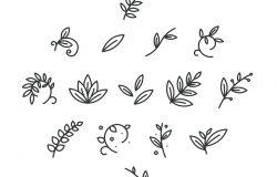 花卉装饰枝叶植物线笔划图标符号集