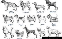 狗繁殖向量集。旧式写意插