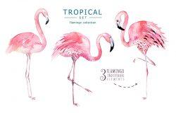 手绘水彩热带鸟类一套火烈鸟。异国情调玫瑰鸟插图丛林树巴西时尚艺术。完美的面料设计。阿罗哈收藏。