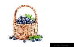 蓝莓篮子,背景为白色。