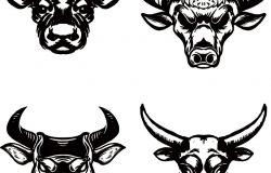 白色背景上的一组手画的牛头。标志的设计要素。矢量图
