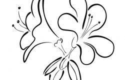 杜鹃花的照片。