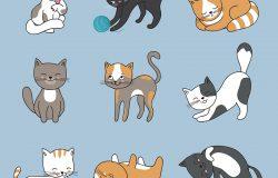 手画可爱的猫。矢量小猫集。动物小猫集卡通猫角色插图