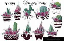 紫色的仙人掌和肉质植物矢量剪贴画