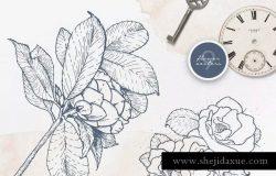 40款水彩图形PS画笔笔刷&矢量花卉插画素材 Cloudy Watercolor Decorations Set