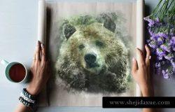 质朴的动物水彩手绘插图Vol.1 Rustic Watercolor Animals – Volume 1