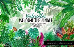 热带雨林水彩手绘树叶插画集 Tropical Leaves in the Jungle