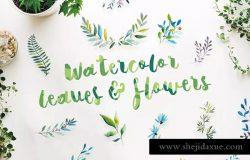 21组水彩叶子&花卉剪贴画合集 21 Watercolor Leaves & Flowers