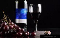 葡萄酒品牌商标设计效果预览酒瓶样机